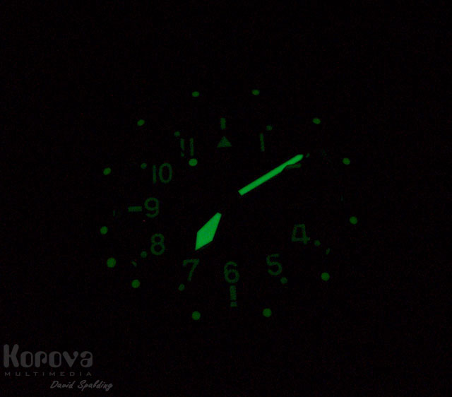 20100611-2623_owm5_night_lume.jpg